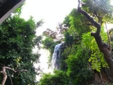 恰如 一幅王維畫 幾首杜甫詩 的 清暉園 Qing Hui Garden, ShunTak