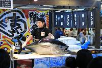 Maguro filleting ,  金槍魚切割解體